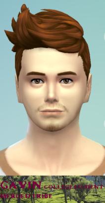 Gavin Chyron 4