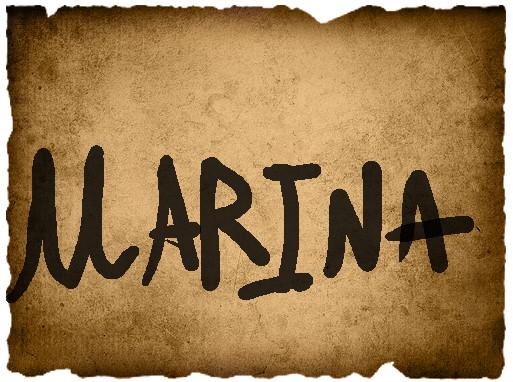 Marco's Vote- Marina