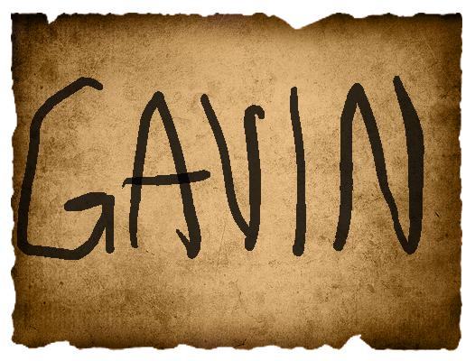 Mathieu's Vote- Gavin