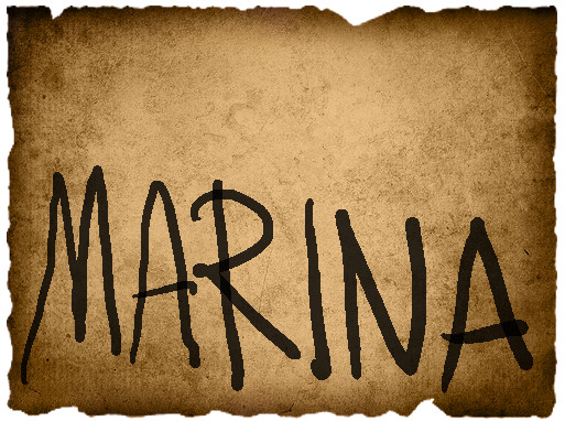Mathieu's Vote- Marina