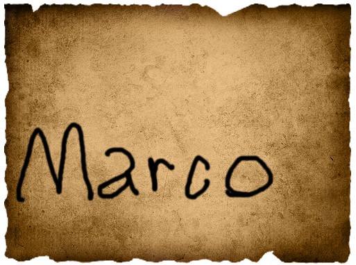 Gavin's Vote- Marco