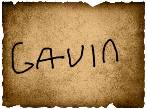 Irene's 1st Vote- Gavin