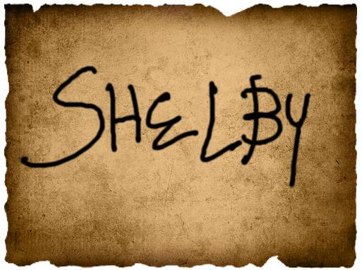 Irene's Vote- Shelby